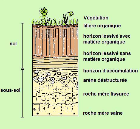 Sol et sous sol - Les differents types de sols ...